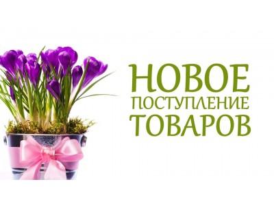 Поступление товаров 14 апреля